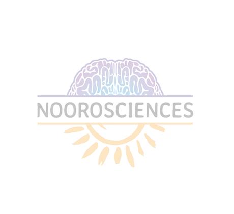 Enseigner l'arabe au travers des neurosciences